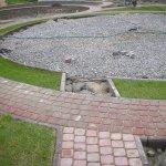 Укладка тротуарной плитки (Коркино) фото 7