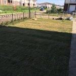 Укладка рулонного газона фото 4