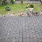 Укладка тротуарной плитки п. Федоровское фото 12