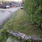Благоустройство сада (Белоостров) фото 10