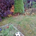 Благоустройство сада (Белоостров) фото 11