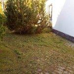 Благоустройство сада (Белоостров) фото 3