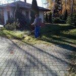 Благоустройство сада (Белоостров) фото 4