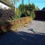 Благоустройство сада (Белоостров) фото 5