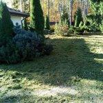 Благоустройство сада (Белоостров) фото 6
