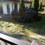 Благоустройство сада (Белоостров) фото 7