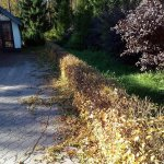 Благоустройство сада (Белоостров) фото 8