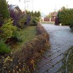 Благоустройство сада (Белоостров) фото 9