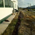 Благоустройство участка Скан-Нева фото 5