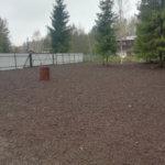 Отсыпка и выравнивание участка под газон Вырица фото 12