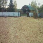 Отсыпка и выравнивание участка под газон Вырица фото 5