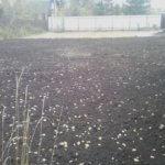 Отсыпка и выравнивание участка под газон Вырица фото 7