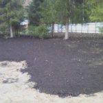 Отсыпка и выравнивание участка под газон Вырица фото 8