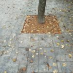 Штампованый бетон Васкелово фото 23
